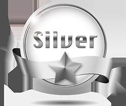 الاشتراك الفضي